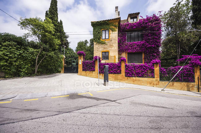 Spain, Barcelona, Sant Gervasi, house overgrown with flowers during daytime — Stock Photo