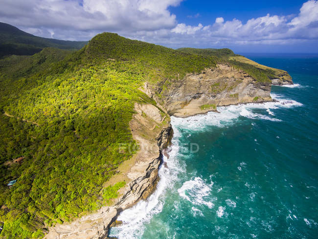 Caribbean, St. Lucia, aerial view of Chaloupe Bay with green plants on shore — Stock Photo