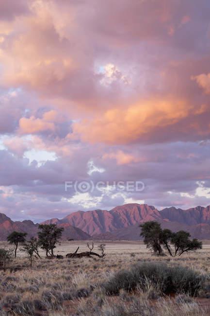 Africa, Namibia, Sossusvlei, paesaggio con montagne, alberi e nuvole al tramonto — Foto stock
