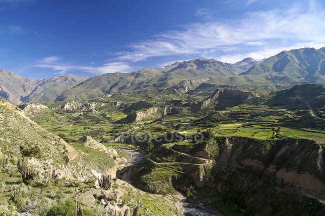 Vista al Colca Canyon dall'alto — Foto stock