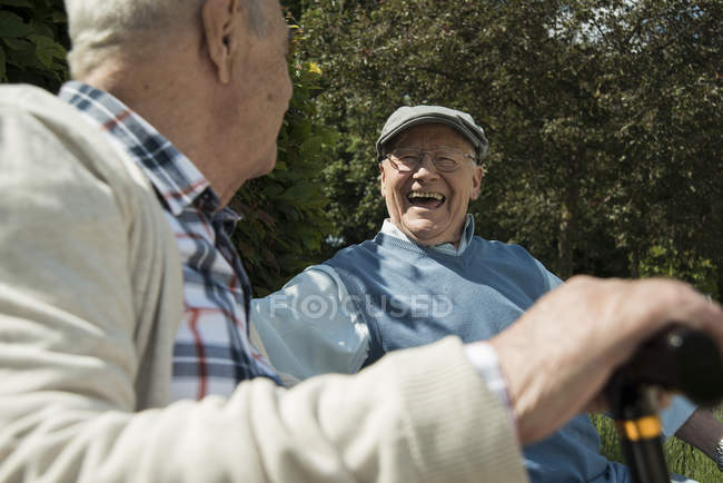 Two old friends having fun in the park — Stock Photo