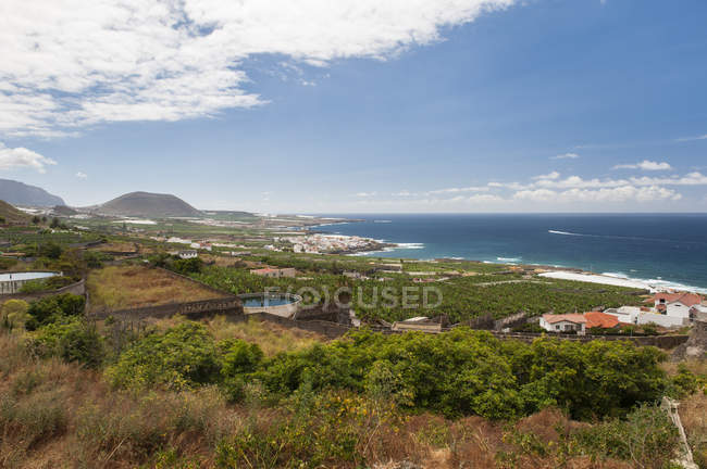 Spain, Canary Islands, Tenerife, North coast — Stock Photo