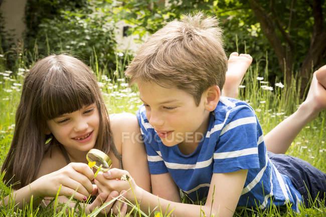 Портрет брата и сестры, лежащих на лугу в саду, веселящихся с лупой — стоковое фото