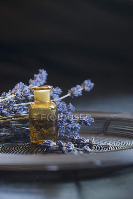 Lavender oil in a glass bottle — Stock Photo