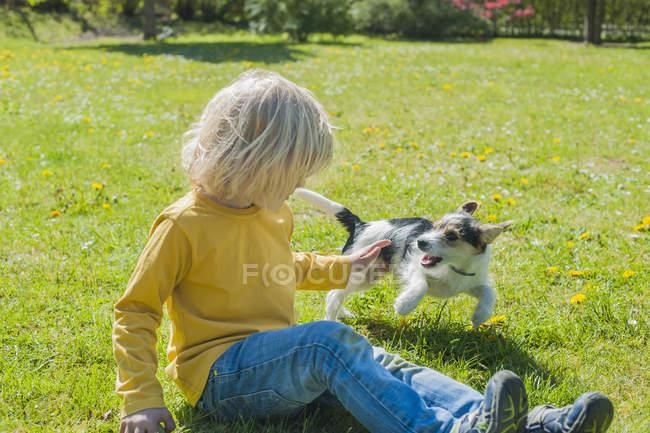 Garçon jouer avec Jack Russel Terrier — Photo de stock
