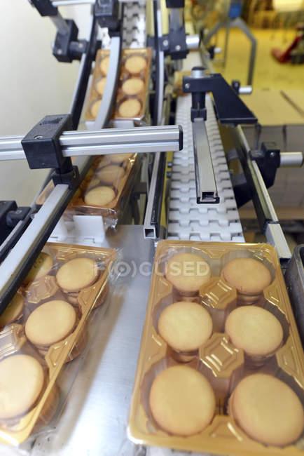 Línea de producción con blisters de cookies en la industria panadera - foto de stock