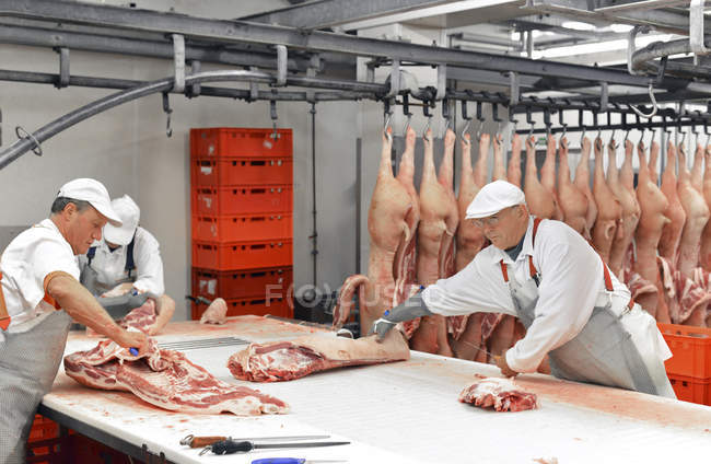 Чоловічий робітники, свиня туші в бійню — стокове фото