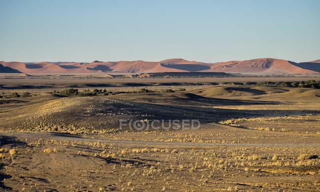Африка, Намибия, Sossusvlei, ландшафт, песчаные дюны на рассвете с холмов на фоне — стоковое фото
