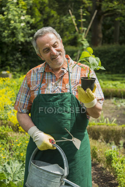 Gardener with potted plant and watering can — Stock Photo