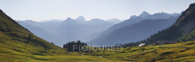 Vista desde Obere Alpe Kanisfluh montaña, Valle de Bregenzerach cerca de Au, bosque de Bregenz, región de Bregenzerwald, Vorarlberg, Austria - foto de stock