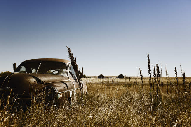 Canada, Junk yard with old US cars during daytime — Stock Photo