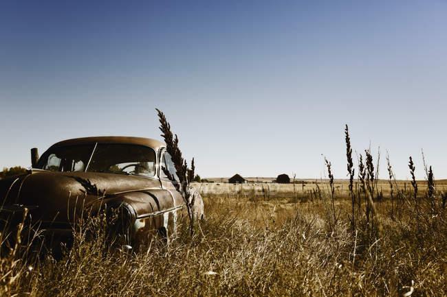 Canadá, ferro-velho quintal com carros americanos velhos durante o dia — Fotografia de Stock