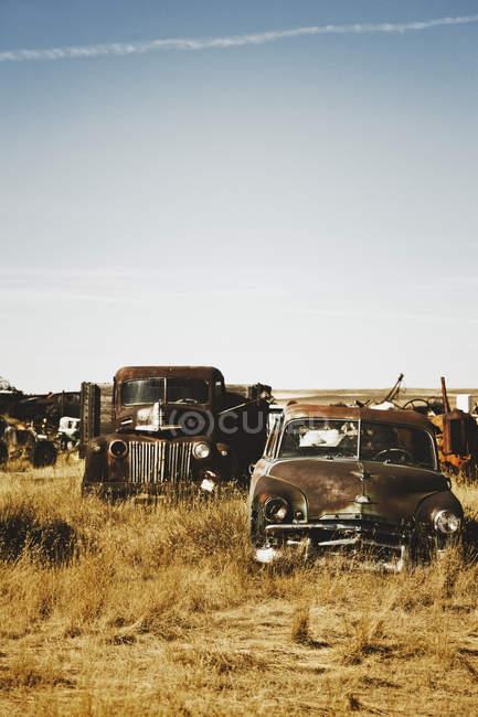 Canadá, ferro-velho jarda com carros americanos velhos — Fotografia de Stock