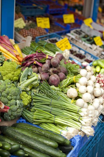 Different fresh vegetables at farmer market — Stock Photo