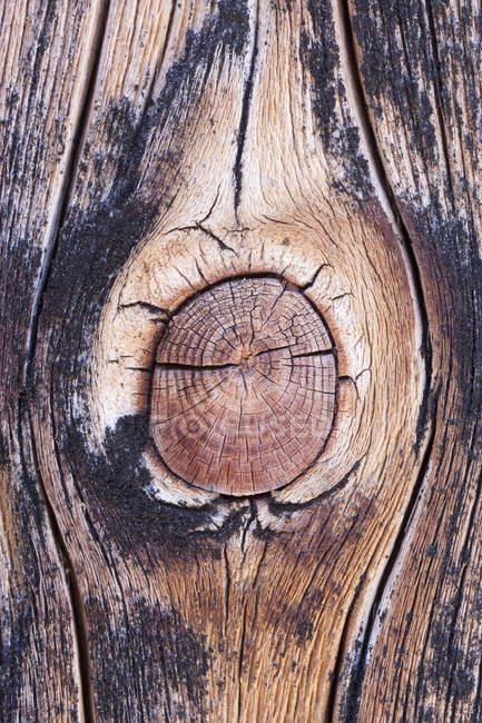 Abeto-velha placa de madeira, close-up — Fotografia de Stock