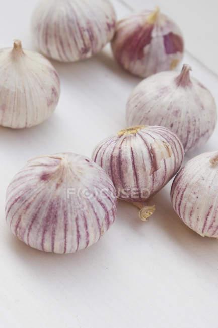 Крупным планом свежий чеснок луковицы на белой поверхности — стоковое фото