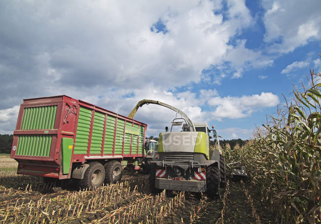 Germany, Corn harvesting with agriculture vehicles — Stock Photo