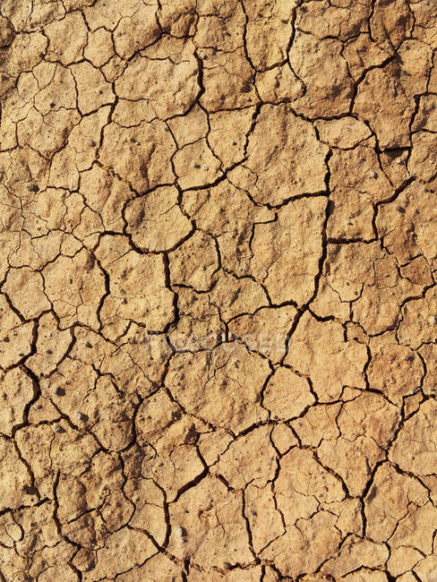 Espagne, La Gomera, Sol sec fissuré — Photo de stock