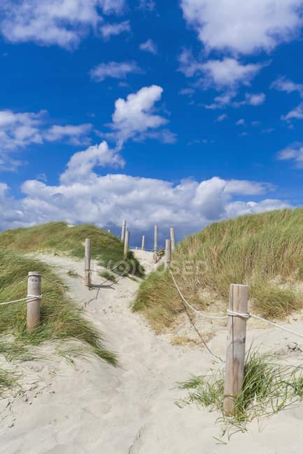Inglaterra, Sussex, Chichester, caminho através de Duna de areia na praia em West Wittering — Fotografia de Stock