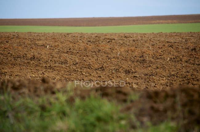 Германия, Гессен, Вид на ферму в дневное время — стоковое фото