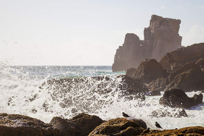 Portugal, View of Tonel beach — Stock Photo