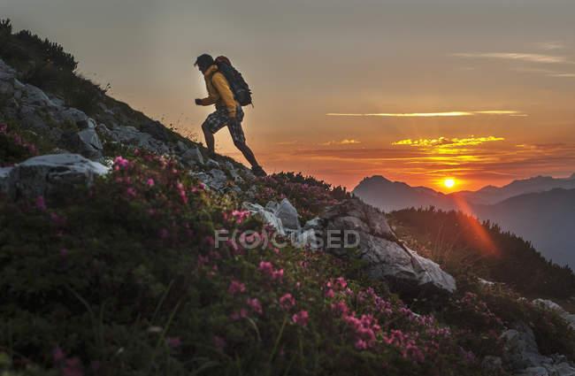 Человек, поход через горы Нидере Тауэрн на восход стране Зальцбург, Австрия — стоковое фото