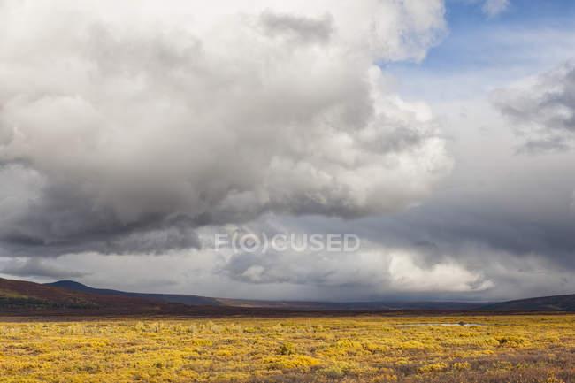 USA, Alaska, Paesaggio lungo Denali Highway in autunno con Alaska Range — Foto stock