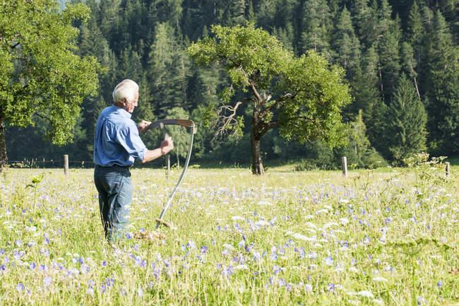 Старший фермер в летнем лугу, Зальцбург, Австрия — стоковое фото