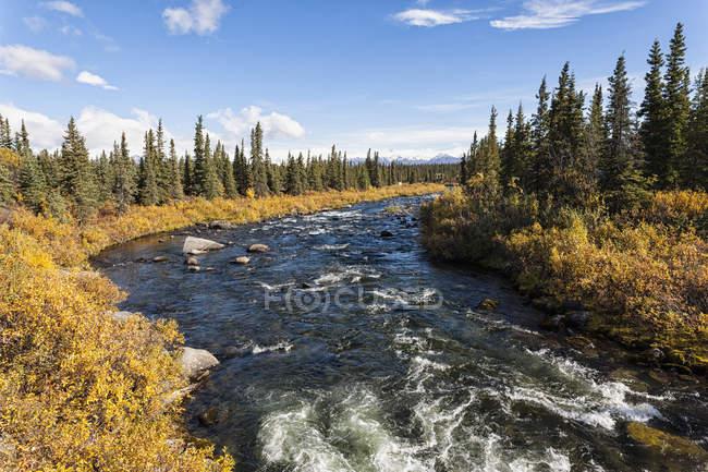 USA, Alaska, Veduta del torrente e del paesaggio in autunno — Foto stock