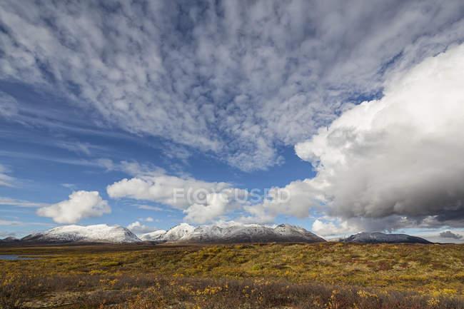 USA, Alaska, Landschaft am Denali Highway im Herbst mit Alaska Range — Stockfoto