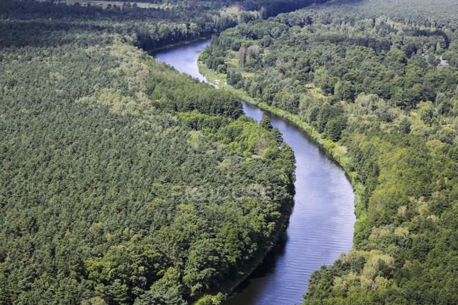 Germania, Veduta della foresta e del fiume durante il giorno — Foto stock