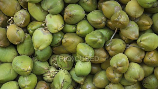 Cocos verdes frescos en un montón - foto de stock
