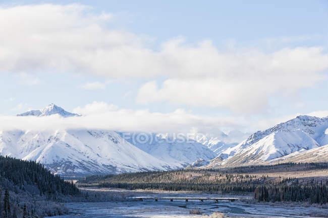 USA, Alaska, View of bridge over Teklanika River at Denali National Park — Stock Photo