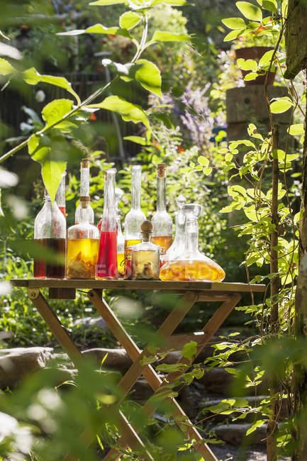 Diverses huiles à base de plantes sur la table dans le jardin rural — Photo de stock