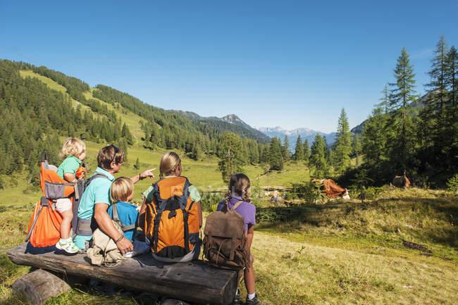 Семья, прогулки в горах — стоковое фото