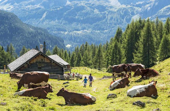 Девочка и мальчик бродил в Альтенмаркте Цаухензее в дневное время, страна Зальцбург, Австрия — стоковое фото
