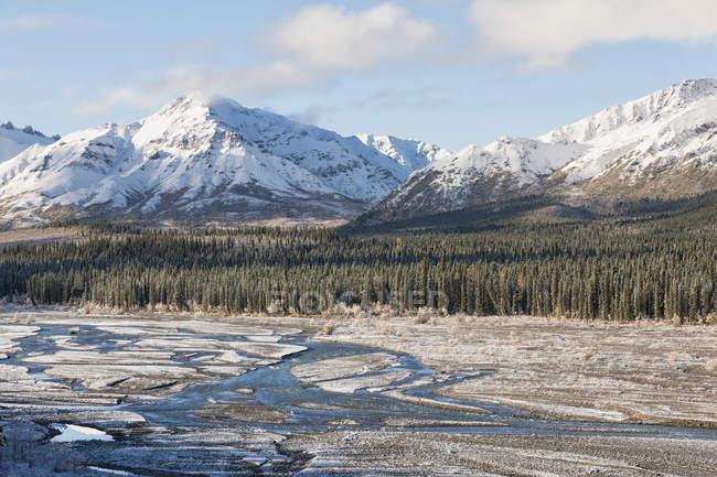 EUA, Alasca, vista do Rio Teklanika no Parque Nacional Denali — Fotografia de Stock