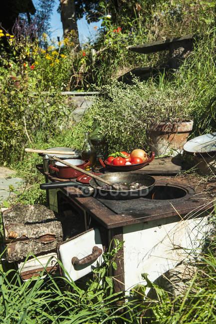 Escena rural de preparación de alimentos en la estufa en jardín - foto de stock