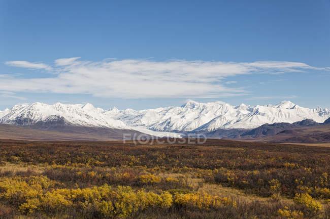 USA, Alaska, Landscape along Denali Highway in autumn with Alaska Range — Stock Photo