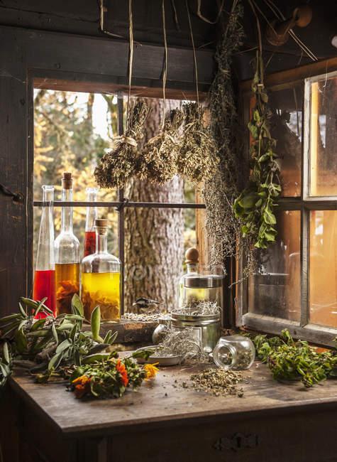 Diverses huiles et herbes à base de plantes dans la cabane de campagne — Photo de stock