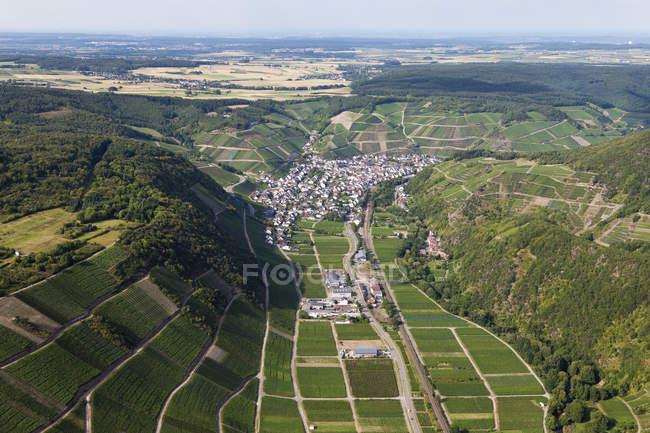 Europa, Germania, Renania Palatinato, Veduta del vigneto a Dernau — Foto stock