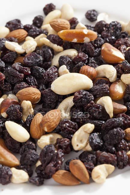 Verschiedene Nüsse und Rosinen aus nächster Nähe — Stockfoto