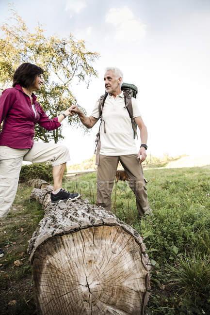 Senior couple on a hike crossing tree trunk — Stock Photo