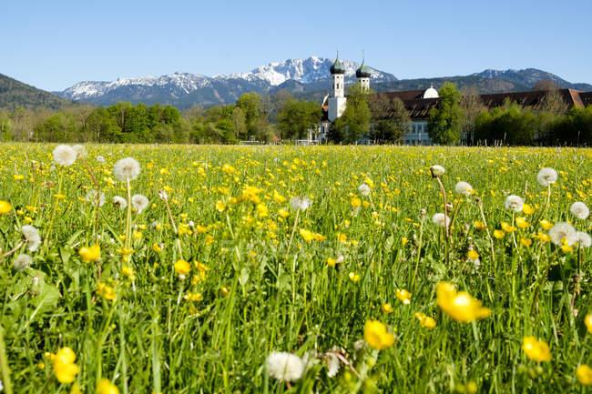 Germany, Bavaria, Upper Bavaria, Benediktbeuern, view to Benediktbeuern Monastery, Benediktenwand in the background — Fotografia de Stock