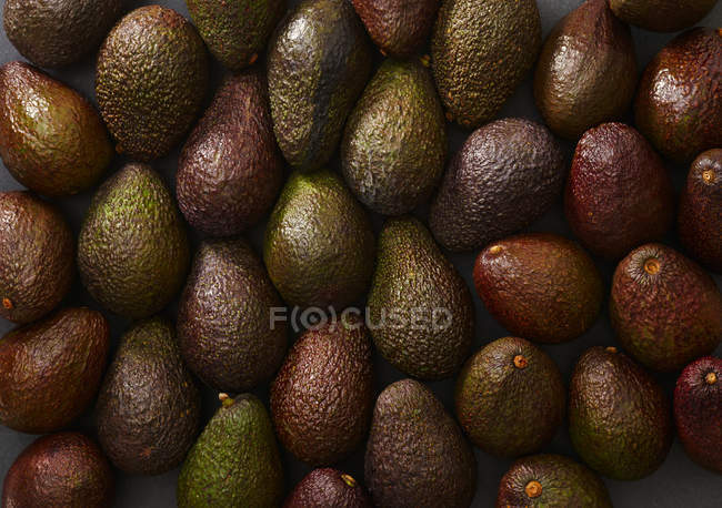 Background of fresh ripe brown avocados - foto de stock