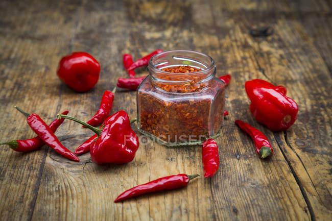 Red chilis and chili powder — Stock Photo