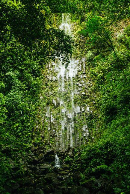 Коста-Ріка, вулкан Ареналь Національний парк з водоспадом ла Фортуна — стокове фото