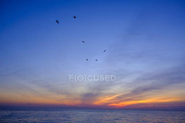Italien, ligurien, riviera di ponente, Golf von Genua, noli, sonnenaufgang am strand — Stockfoto