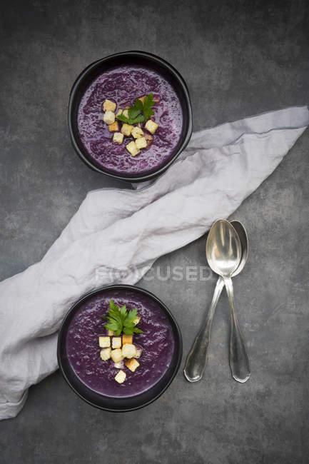 Schüssel Rotkohlsuppe garniert mit Croutons — Stockfoto
