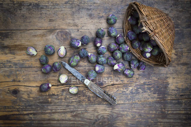 Brotos roxos de Bruxelas espalhados na tabela de madeira rústica com cesta e a faca oxidada — Fotografia de Stock